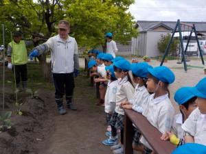 地域の方に来ていただいて、畑の栽培を一緒にしていただきました。まずは、畝にどのように苗を植えるかの話をしていただきました。子どもたちは自分たちで育てる野菜をどのように植えるかを一生懸命に聞いていました。
